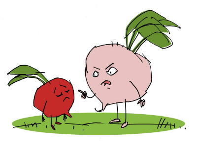Moral Stories for Children: Why are beetroots always red