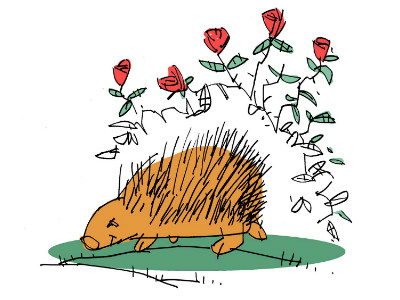 Moral Stories for Children: Why do Porcupines have quills