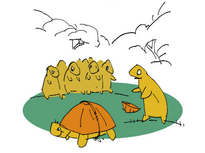 Moral Stories for Children: Why do Tortoises have a shell on their backs?