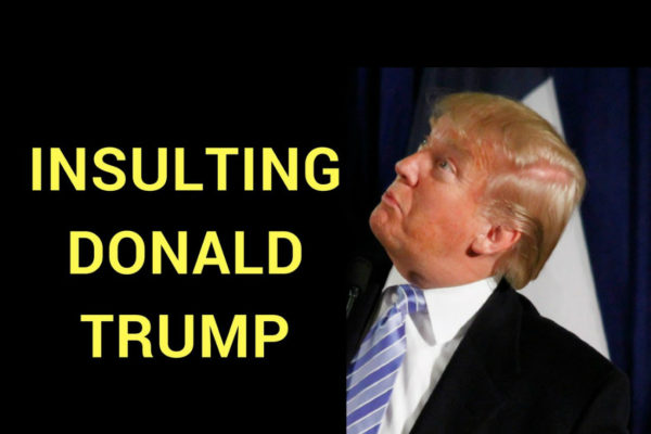 Insulting Donald Trump Horrible Insults