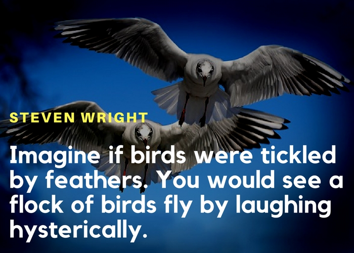 Five Funny Quotes On Animals Ouchmytoecom
