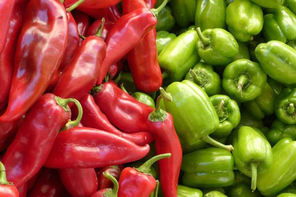 Cost of organic food vs non organic food