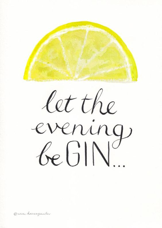 Funny Gin Quote: Let the Evening Begin
